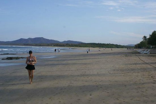 Hotel Tamarindo Diria:                   Huge, clean beach (looking North)