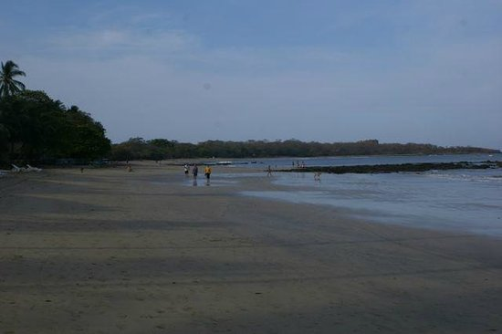 Hotel Tamarindo Diria Beach Resort:                   Huge, clean beach (looking south)