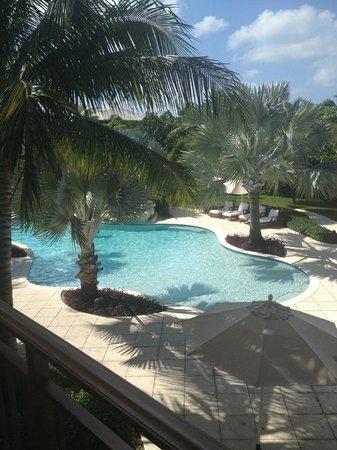 Villa del Mar:                   view of pool and garden