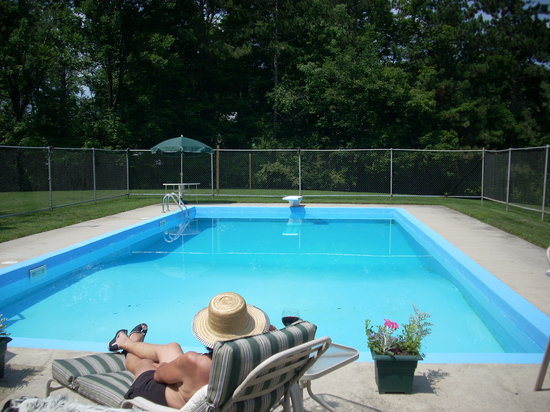 Northview Inn Bed and Breakfast: In-ground swimming pool