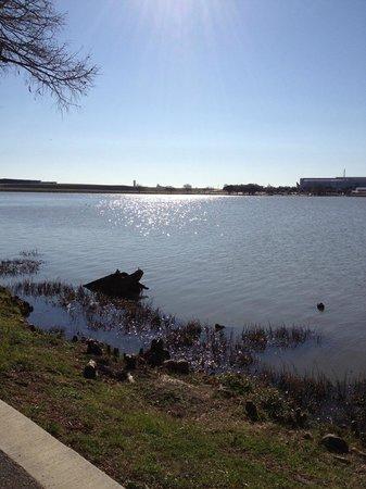 Bachman Lake Park
