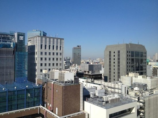 Hotel Niwa Tokyo: View from room