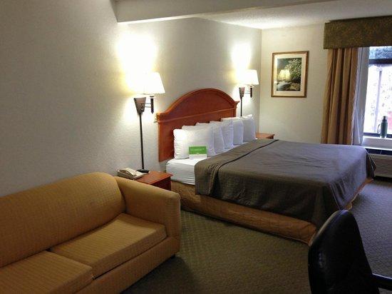 La Quinta Inn & Suites Sevierville / Kodak: room overview