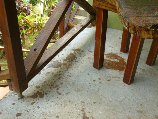 Hibiscus Valley Inn:                                     ugly stains on balcony
