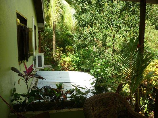 هيبيسكوس فالي إن:                                     side view from balcony on corrugated iron roof             