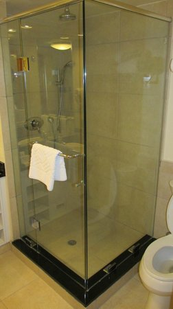 Hilton Trinidad & Conference Centre: Shower