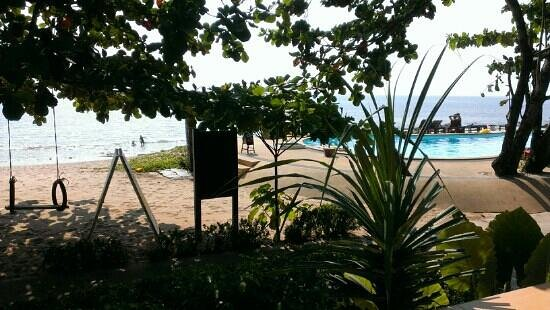 Amantra Resort & Spa:                   view from our Bungalow