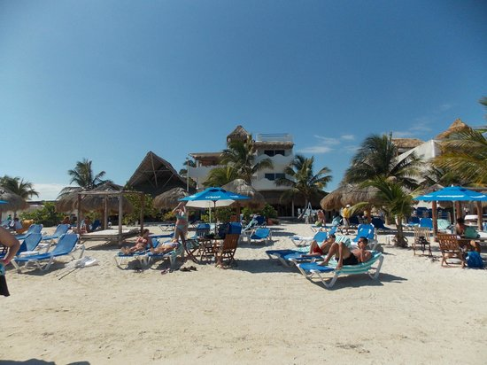 Pez Quadro Beach Club:                   view from the beach