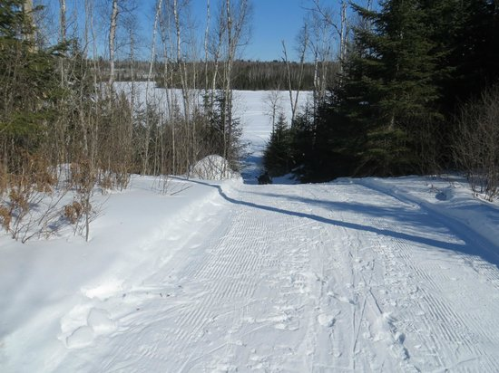 Boundary Waters Canoe Area Wilderness:                   Cross country skiing on groomed trails and frozen lakes