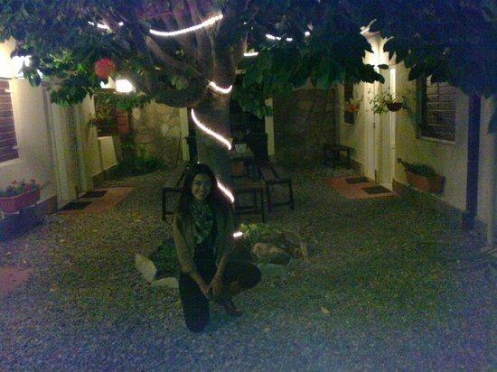 Hostel Los Troncos:                   12