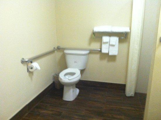 Comfort Inn - Los Angeles / West Sunset Blvd.: Handicap room newly remodeled
