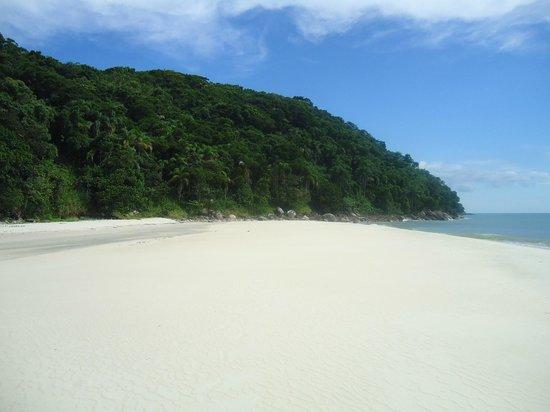 Boicucanga Beach:                   parte de la playa de la isla