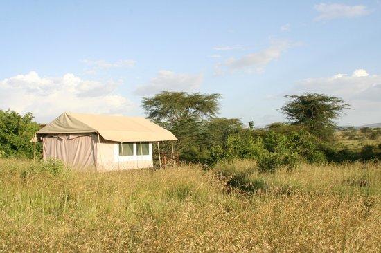 Mara Eden Safari Camp: Ein zu Hause im Bush