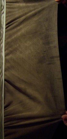Nativo Lodge Albuquerque:                                     bed 1 suit 1