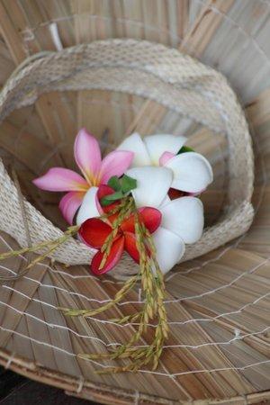 Rice Museum: Frangipani flowers