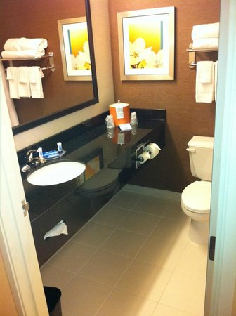 Fairfield Inn & Suites Holland:                                     Bathroom - Standard King