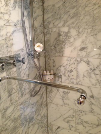 St. Pancras Renaissance Hotel London: shower