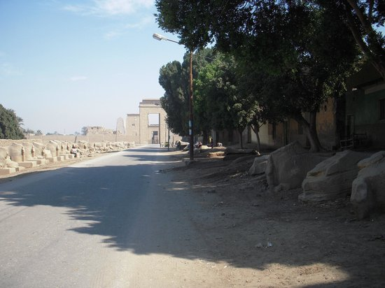 Avenue of Sphinxes - between Luxor and Karnak temples