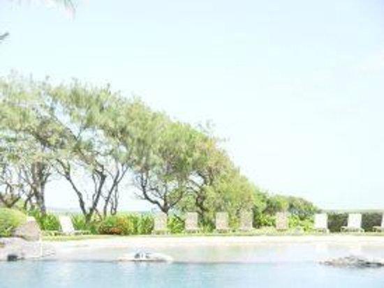 Kauai Beach Resort:                                     View of the surrounding area