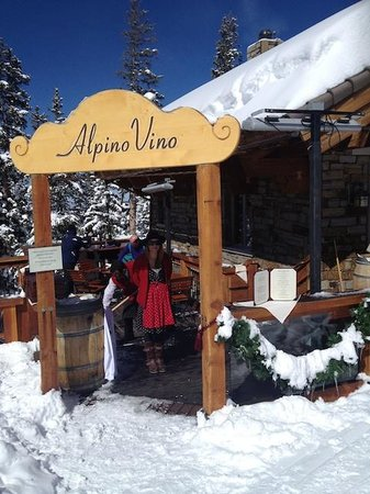 Alpino Vino:                   Entrance from See Forever Trail