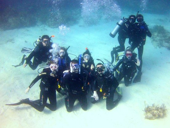 Scuba Outfitters of Naples, LLC:                   scuba outfitters trip to key largo