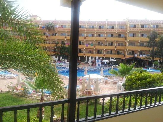 Vue de la piscine depuis la chambre picture of hovima for Aparthotel jardin caleta costa adeje
