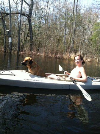 Great Escapes Kayak Expeditions:                   Great Escape on the Waccamaw