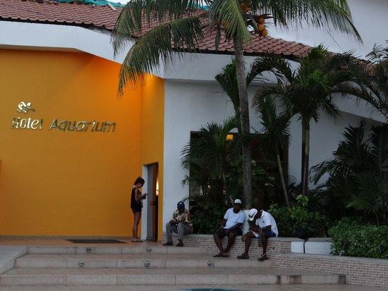 Decameron Aquarium :                   entrada al hotel