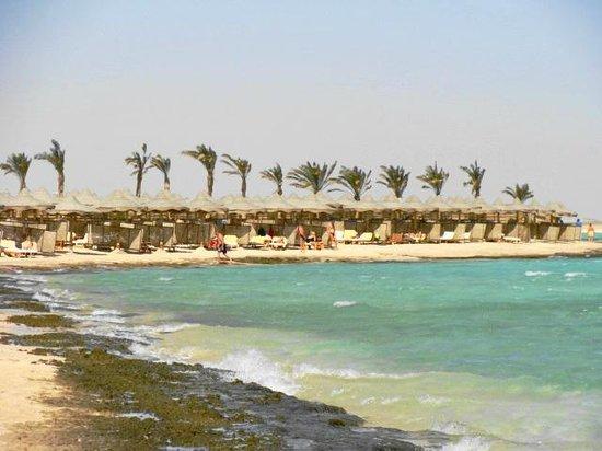 Blue Lagoon Marsa Alam:                                                       spiaggia