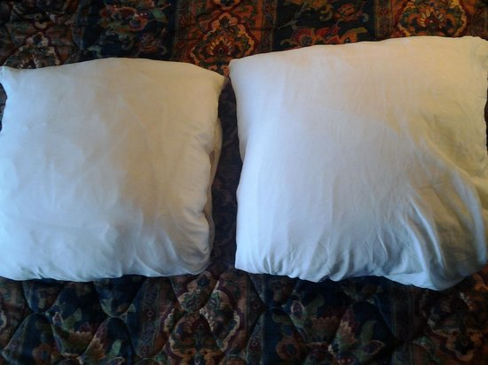 Super 8 Hamilton:                   rocks they call pillows