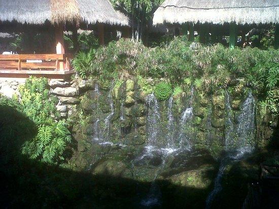 Iberostar Tucan Hotel: Buffete