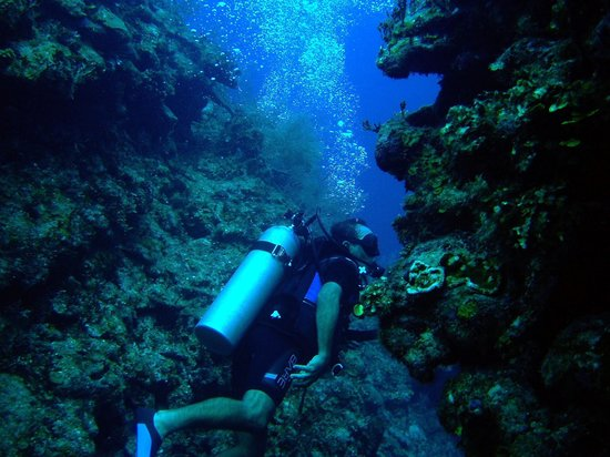 Bucaneros Del Caribe:                                     Jorge guiding through cracks in reef.