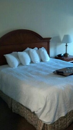 Hampton Inn Titusville / I-95 Kennedy Space Center: bed