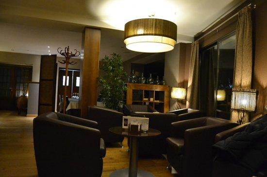Hotel Cotori: Salon