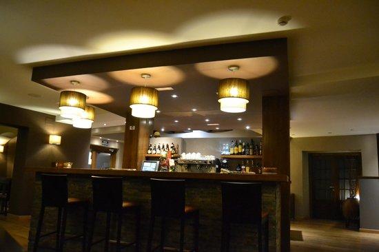 Hotel Cotori: Barra