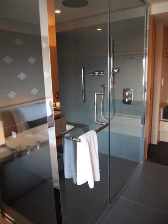 The Capitol Hotel: Deluxe king bath / shower room
