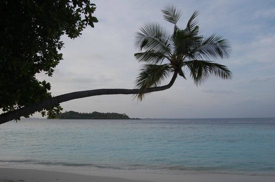 Biyadhoo Island Resort:                   paradise