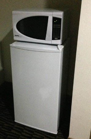 Ramada Plaza Niagara Falls: Nice touch to have a fridge and microwave included.