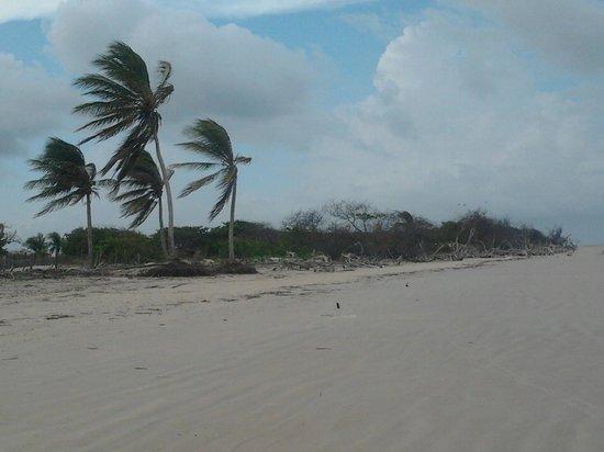 Praia de Igarape Grande/Turiacu Por: Suelenilson Martins