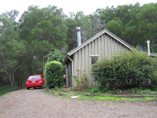 Wattle Gully Retreat :                   Rosegum
