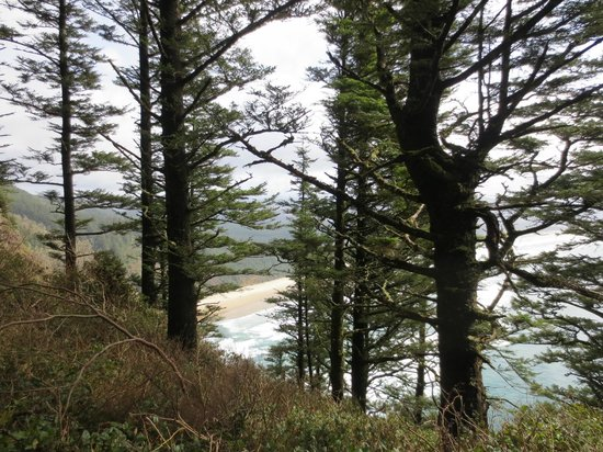 Cape Lookout State Park: View