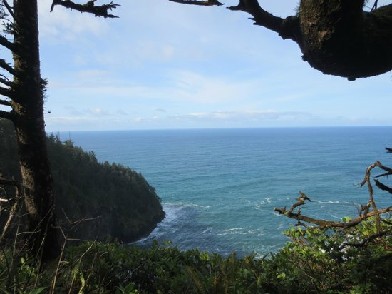 Cape Lookout State Park照片