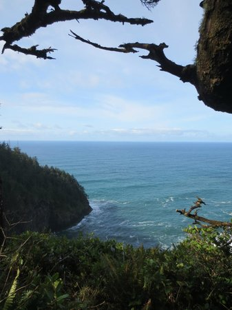Cape Lookout State Park : View