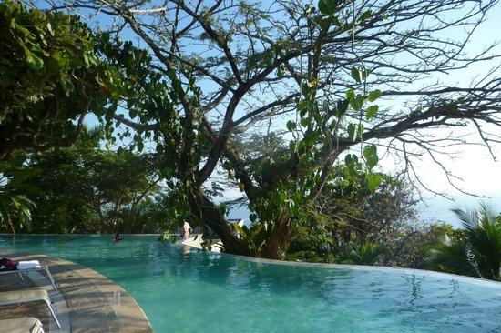 La Mariposa Hotel:                   Infinity pool