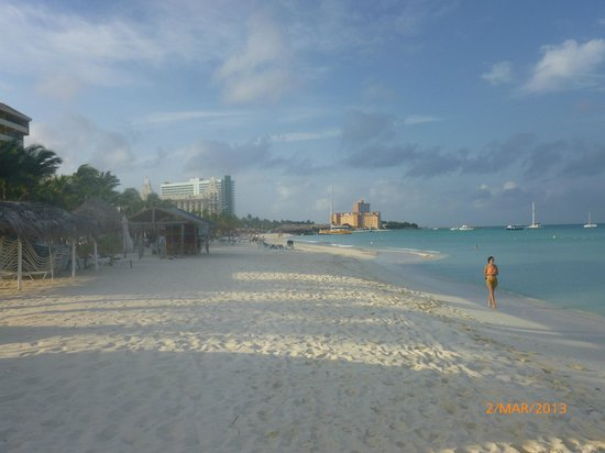 Occidental Grand Aruba All Inclusive Resort:                   View of the beach