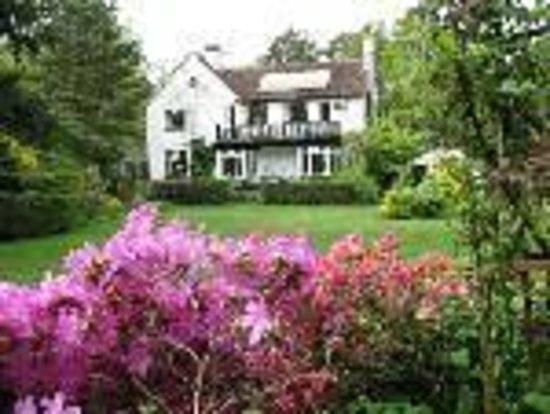 Tinker's Furze:                                     Rear of house from bottom of garden