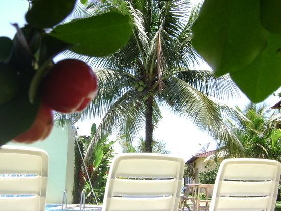 Pousada Recreio da Praia: Relax!