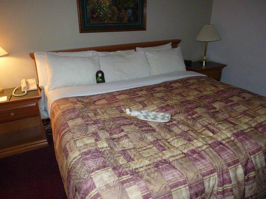 Inns Of Banff:                   Huge bed