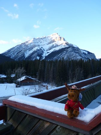 Inns Of Banff:                   My RCMP teddy enjoying the view from my balcony in Room 500