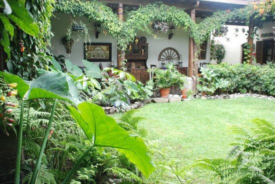 Hotel la Catedral:                   Garden                 